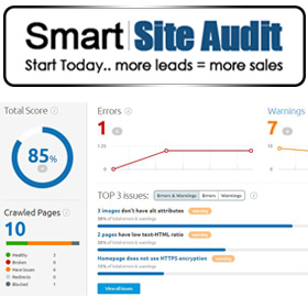Smart Site Audit
